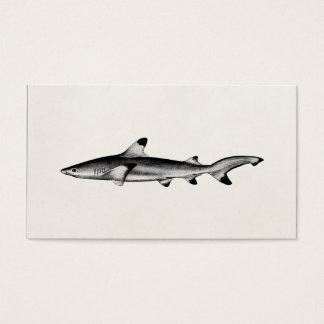 Vintage Reef Shark Illustration - Black Tipped Business Card
