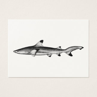 Vintage Reef Shark Illustration - Black Tipped Business Card