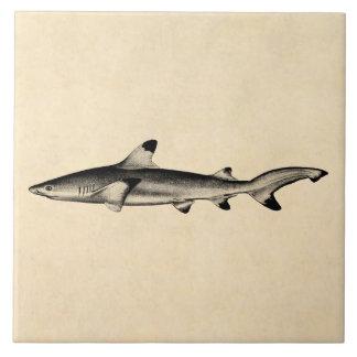 Vintage Reef Shark Illustration - Black Tipped Large Square Tile