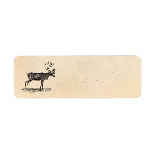 Vintage Reindeer Illustration -1800's Christmas