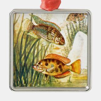 Vintage Restored Fish Silver-Colored Square Decoration