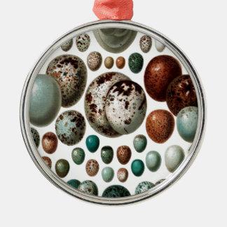 Vintage retro bird eggs pattern christmas ornament
