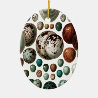 Vintage retro bird eggs pattern christmas ornament