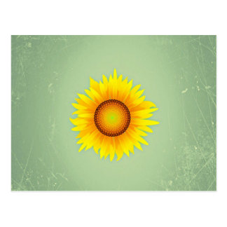 Vintage Retro Bright Yellow Sunflower / Mint Green Postcard