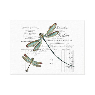 Vintage, Retro Design France - dragonfly, insect Canvas Print