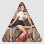 vintage retro fashion western country triangle sticker