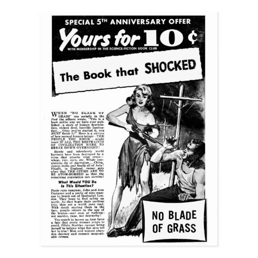 Vintage Retro Kitsch Bad Ad The Book That Shocked! Postcards