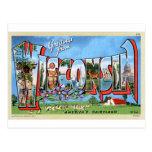 Vintage Retro Kitsch Travel Post Card Wisconsin