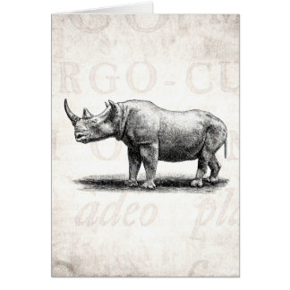 Vintage Rhinoceros Illustration Rhino Rhinos Card