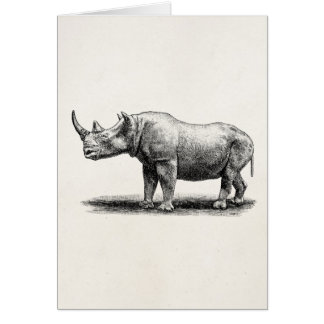 Vintage Rhinoceros Illustration Rhino Rhinos Greeting Card