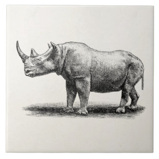 Vintage Rhinoceros Illustration Rhino Rhinos Tile