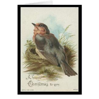 Vintage Robin, Christmas Greeting Card
