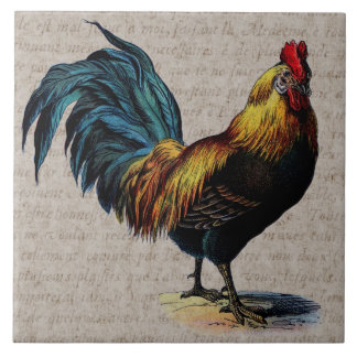Vintage Rooster and Antique Text Collage - Custom Tile