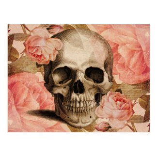 Vintage Rosa Skull Collage Postcard
