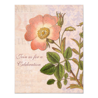 Vintage Rose Birthday Party Invitation