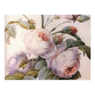 Vintage Rose Carnation Bouquet Post Card