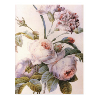 Vintage Rose, Carnation Bouquet Postcard