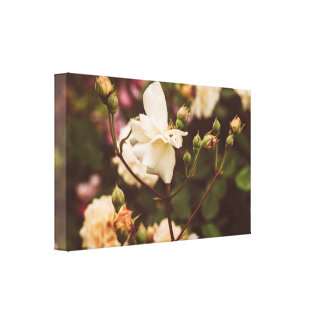 Vintage rose garden canvas print