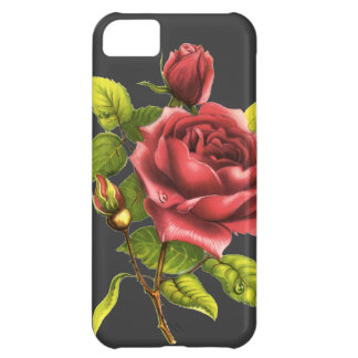 Vintage Rose on gray iPhone 5C Case