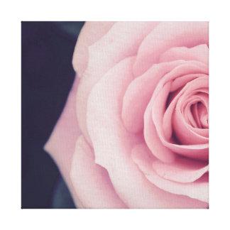 Vintage Rose Photo Canvas