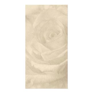 """""""Vintage Rose"""" Photo Cards"""