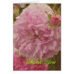 Vintage Rose Thank You Greeting Cards