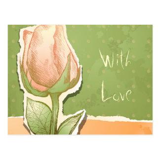 Vintage rosebud in green, postcard
