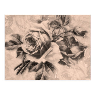 Vintage Roses Sepia Post Card
