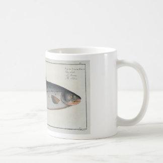 Vintage Salmon Mug