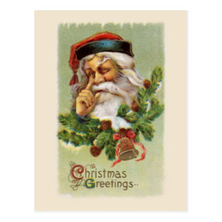 Vintage Santa and Evergreens Postcard