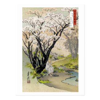 Vintage Sasaki Toyokichi Nihon Hana Zue Postcard
