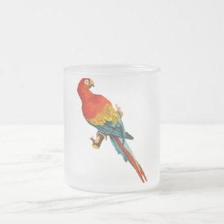 Vintage *Scarlet Macaw* Parrot Desing Coffee Mugs