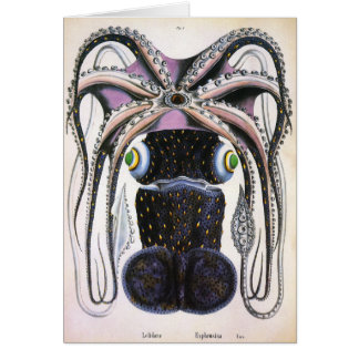 Vintage Science Biology, Giant Octopus or Squid Greeting Card