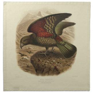 Vintage Science NZ Birds - Kea Cloth Napkins