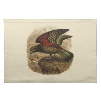 Vintage Science NZ Birds - Kea Placemat
