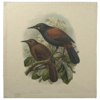 Vintage Science NZ Birds - Saddleback Cloth Napkins