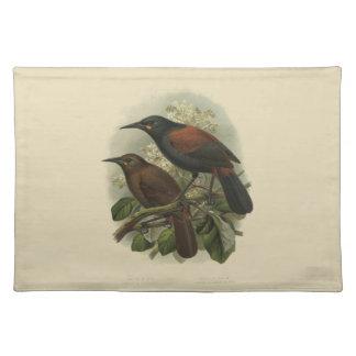 Vintage Science NZ Birds - Saddleback Placemat
