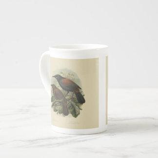 Vintage Science NZ Birds - Saddleback Tea Cup