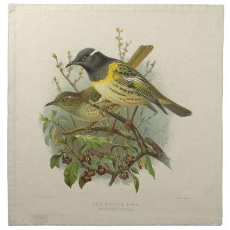 Vintage Science NZ Birds - Stitch Bird Cloth Napkin