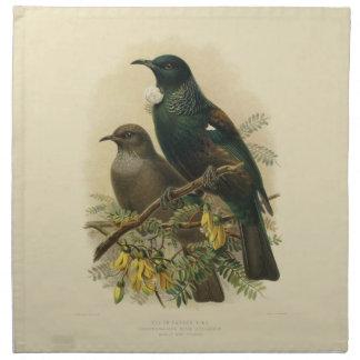 Vintage Science NZ Birds - Tui Cloth Napkins