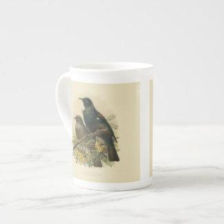 Vintage Science NZ Birds - Tui Tea Cup