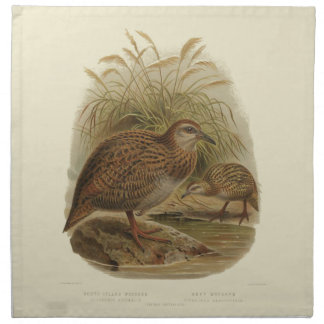 Vintage Science NZ Birds - Weka Cloth Napkins