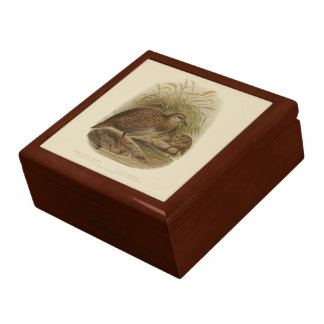 Vintage Science NZ Birds - Weka Gift Box