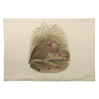Vintage Science NZ Birds - Weka Placemat