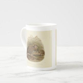 Vintage Science NZ Birds - Weka Tea Cup