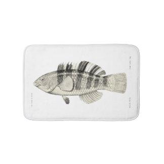 Vintage Science NZ Fish - Banded Parrot Fish Bath Mat