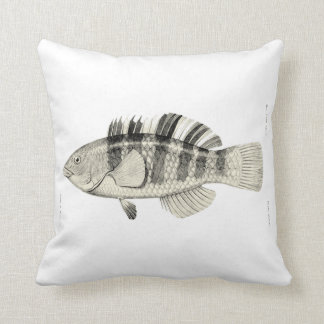 Vintage Science NZ Fish - Banded Parrot Fish Cushion