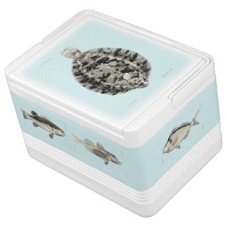 Vintage Science NZ Fish Small Igloo Cool Box