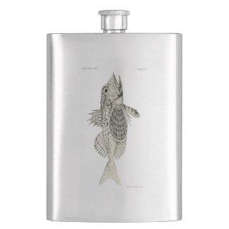 Vintage Science NZ Fish - Spotted Gurnard Hip Flask