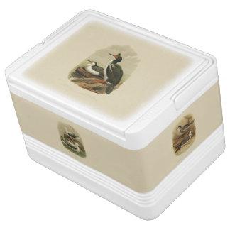 Vintage Science NZ Sea Birds Igloo Cool Box